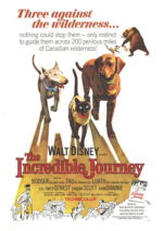 The Incredible Journey movie poster