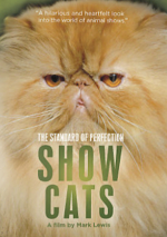 The Standard of Perfection - Show Cats DVD