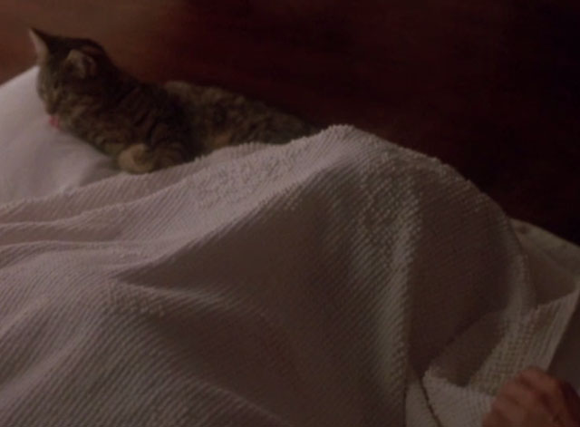 976-EVIL - cat lying next to covered body in bed with hand reaching out