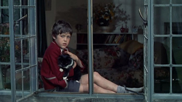 Accident - boy sitting in window with long-haired tuxedo cat
