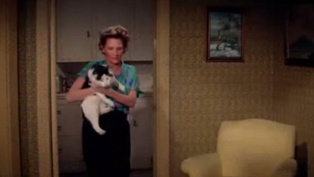 Ada - Alice Sweet Connie Sawyer holding fat tuxedo cat