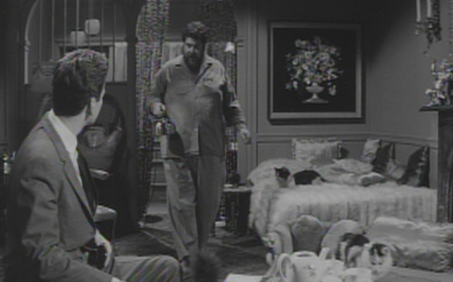 Advice and Consent - Anderson in Manuel's apartment full of cats 2