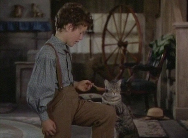 The Adventures of Tom Sawyer - tabby cat Peter does not immediately lick spoon