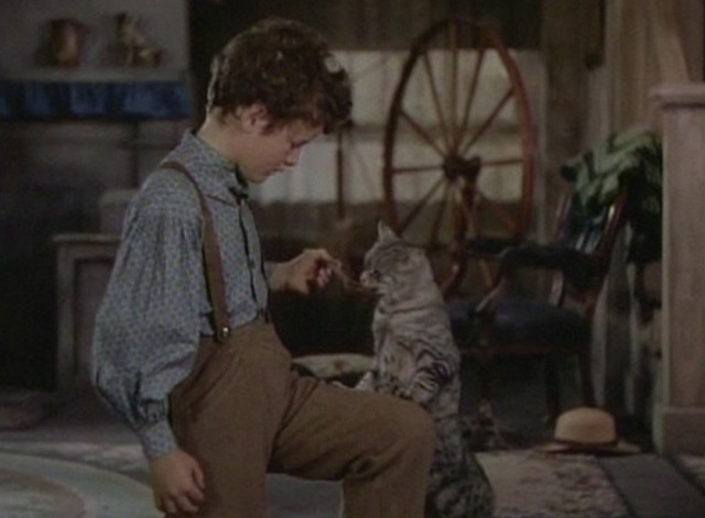 The Adventures of Tom Sawyer - tabby cat Peter licks spoon