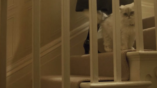Agatha Christie's The Witness for the Prosecution - white Persian cat Mimi on stairs