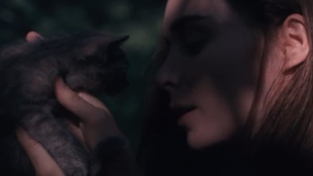 Ain't them Bodies Saints - Ruth Rooney Mara holding up gray kitten