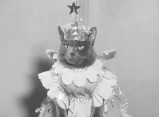 Alphabet Antics - grey cat dressed as fairy princess