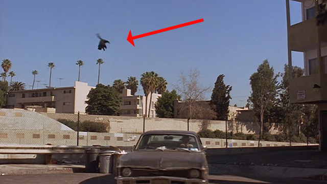 Another You - stuffed black cat flying up from garbage can