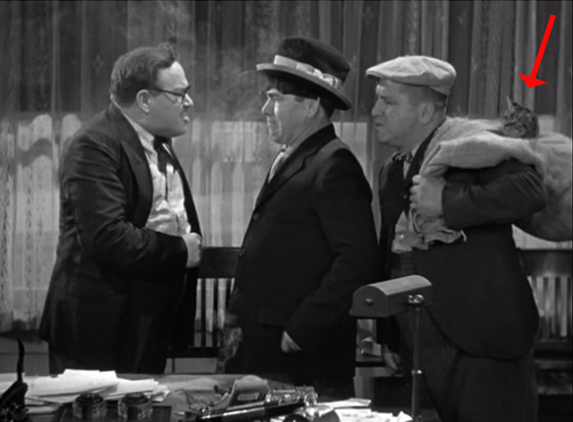 Ants in the Pantry - Moe and boss with Curly Howard holding bag with tabby cat head sticking out