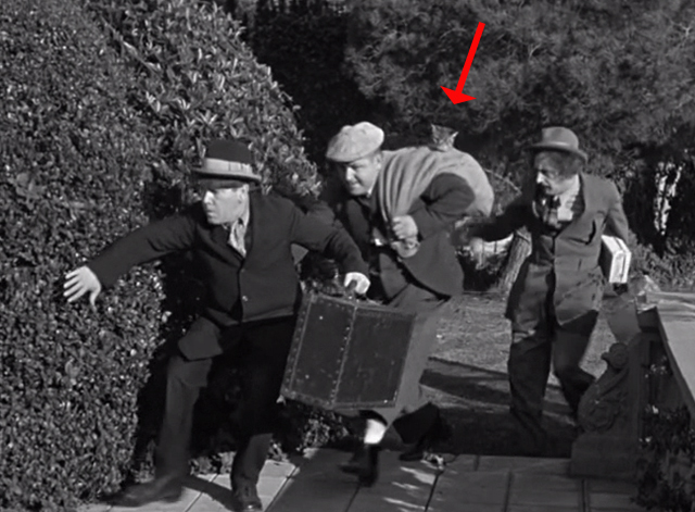 Ants in the Pantry - Three Stooges sneaking up to house with Curly Howard holding bag with tabby cat head sticking out