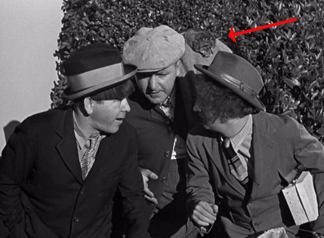 Ants in the Pantry - Three Stooges with Curly Howard holding bag with tabby cat head sticking out