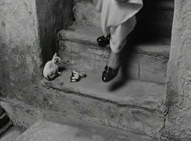 Aparajito - white kittens on stair as Nanda in shoes approaches