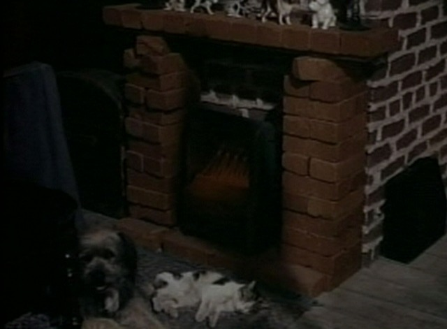 Apartment for Peggy - Nicodemus dog and cat lying in front of fireplace