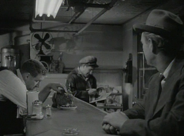 The Asphalt Jungle - cat on lunch counter