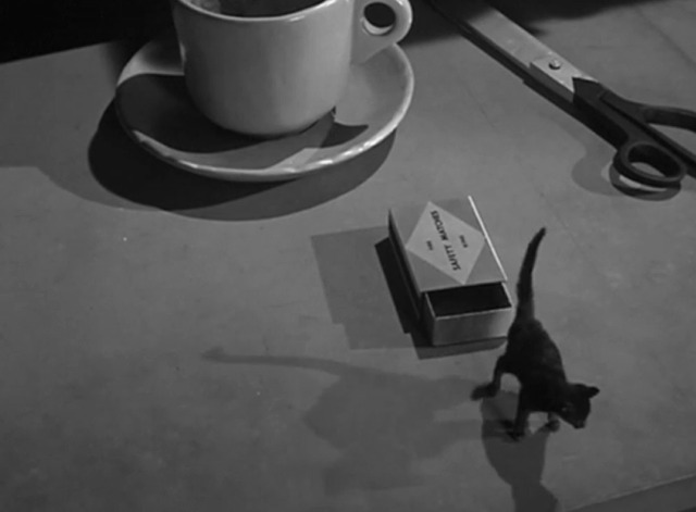 Attack of the Puppet People - black cat Tommy climbs out of a matchbox