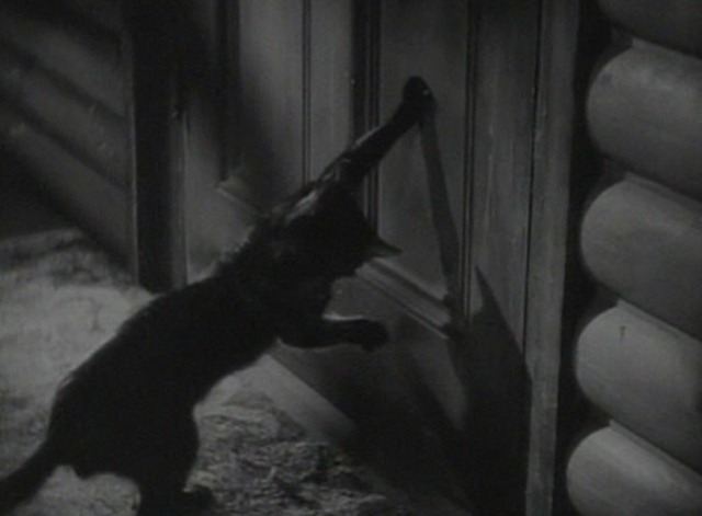 The Awful Truth cat door 2