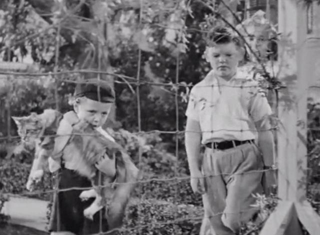 Banjo - Judy Jean Moorhead Beep George McDonald and Skiddles Robert Winans with tabby Maine Coon cat Snoopy approaching pen