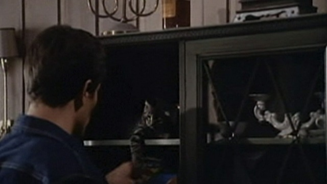 The Bastard - Jason Guiliano Gemma playing with tabby kitten in cabinet