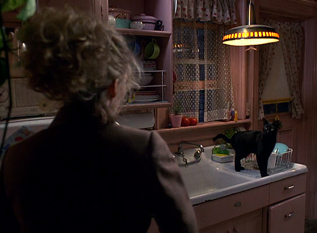 Batman Returns - Seline Michelle Pfeiffer with black cat on counter