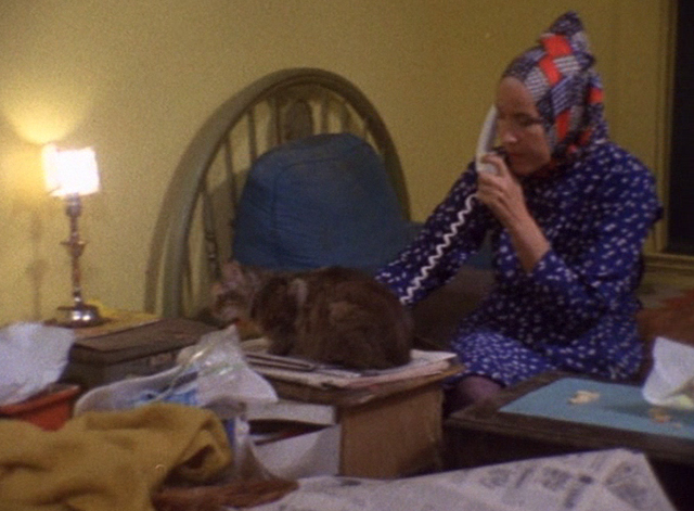 The Beales of Grey Gardens - tabby cat Pippy sleeping on table in front of Edie