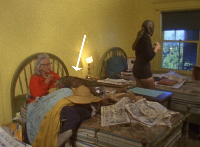 The Beales of Grey Gardens - tabby cat Pippy startled by Edie and running to Edith on bed
