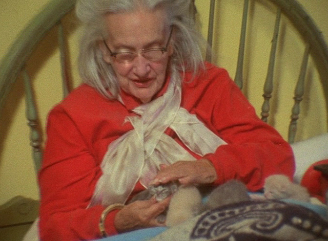 The Beales of Grey Gardens - Edith Bouvier Beale petting tiny grey kitten on bed