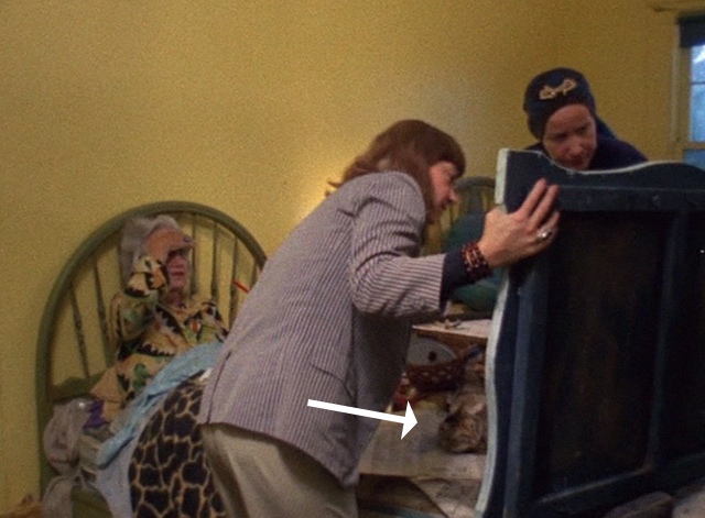 The Beales of Grey Gardens - tabby cat Pippy on bed looking at painting with Edith and Edie Bouvier Beale and Lois Wright