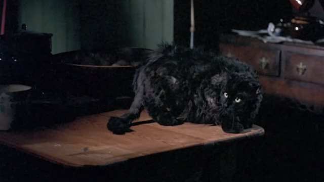 Bedknobs and Broomsticks - ragged black cat Cosmic Creepers on table