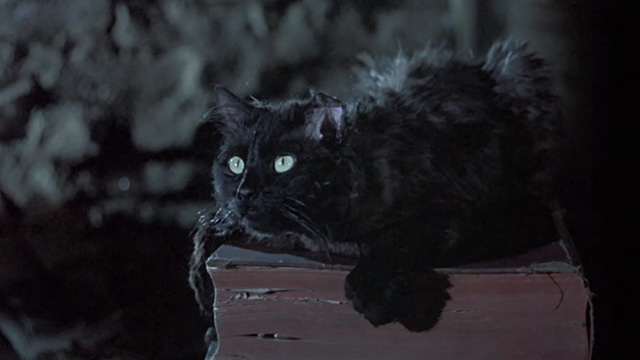 Bedknobs and Broomsticks - ragged black cat Cosmic Creepers on book