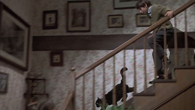 Bedknobs and Broomsticks - ragged black cat Cosmic Creepers running down stairs chased by Charlie