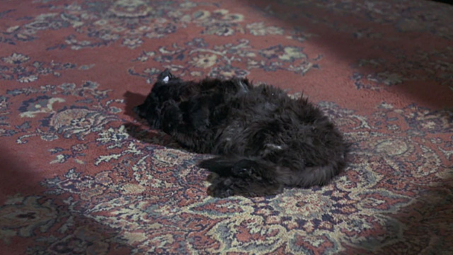 Bedknobs and Broomsticks - ragged black cat Cosmic Creepers lying on carpet
