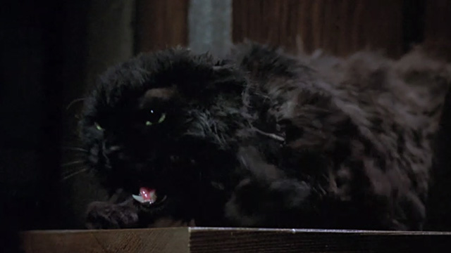 Bedknobs and Broomsticks - ragged black cat Cosmic Creepers on mantel hissing angrily