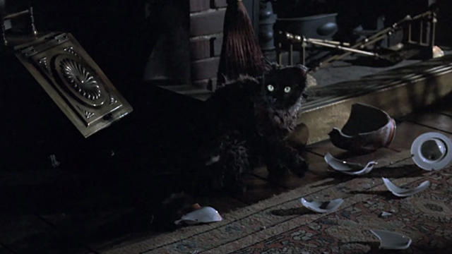 Bedknobs and Broomsticks - ragged black cat Cosmic Creepers by broken vase