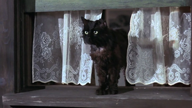 Bedknobs and Broomsticks - ragged black cat Cosmic Creepers on mantel stepping out of window