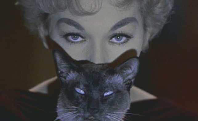 Bell, Book and Candle - cat Pyewacket with Gillian Kim Novak