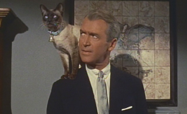 Bell, Book and Candle - cat Pyewacket with Jimmy Stewart