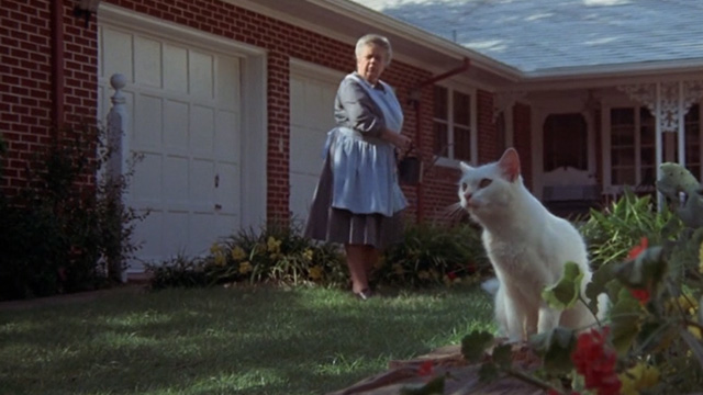 Benji - white cat Sweetie Petey with woman Frances Bavier