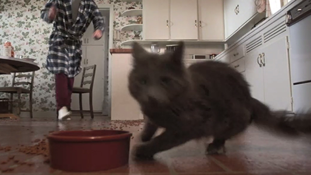 Better Off Dead - gray cat running away from bowl with Lane John Cusack approaching in background
