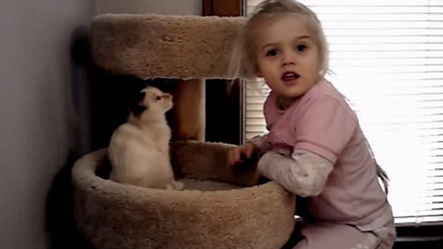Beware the Slenderman - Morgan Geyser as child with Siamese kitten on cat tree