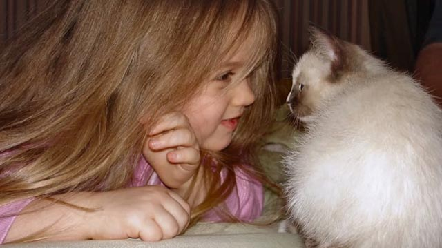 Beware the Slenderman - photograph of Morgan Geyser as child with Siamese kitten