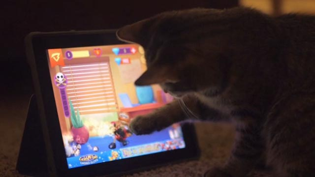 Beware the Slenderman - tabby kitten playing with tablet