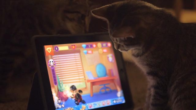 Beware the Slenderman - tabby cats playing with tablet