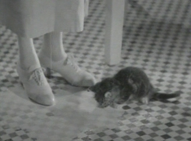 The Big Broadcast of 1936 - kitten lapping up spilt milk on floor