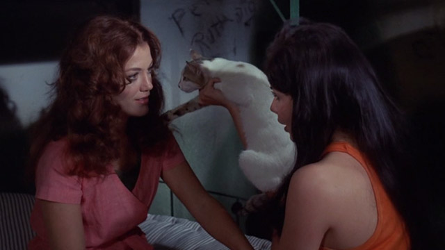 The Big Doll House - Ferina Gina Stuart holds white and colored cat up to Collier Judy Brown