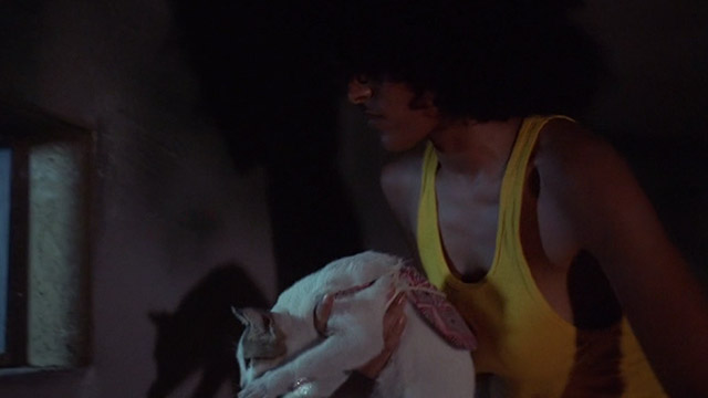 The Big Doll House - Grear Pam Grier holding white and colored cat in front of barred window