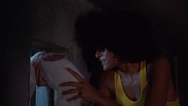 The Big Doll House - Grear Pam Grier pushing white and colored cat through barred window