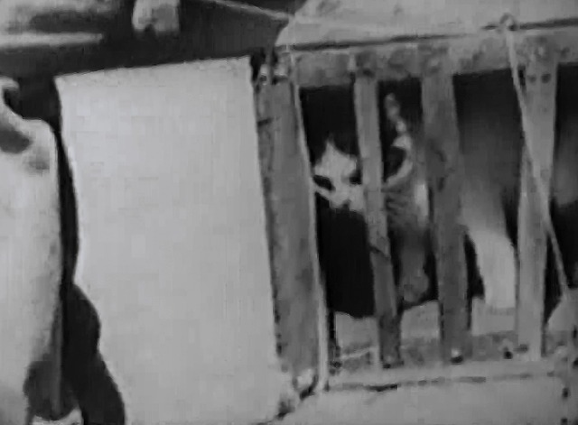 Our Gang - The Big Show - black and white cat in cage on ride