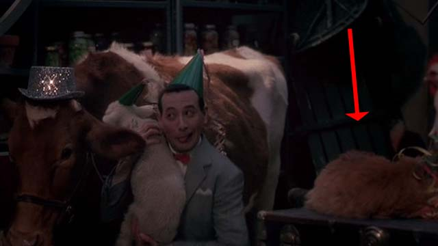 Big Top Pee-Wee - long-haired ginger cat on table in cellar with animals and Pee Wee-Herman