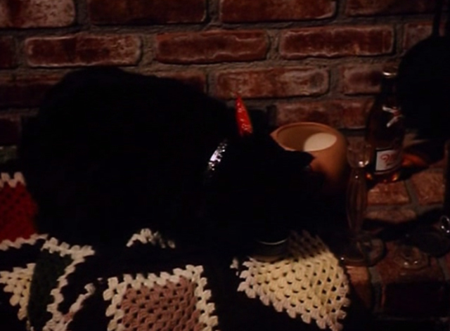 The Big Turnaround - long-haired black cat Archibald drinking from tin