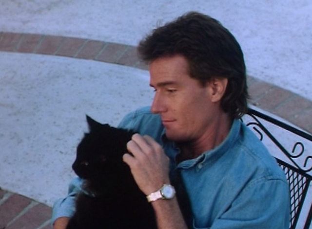 The Big Turnaround - Jim Bryan Cranston sitting with long-haired black cat Archibald outside